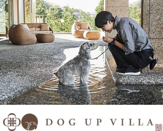 DOG UP VILLA ドッグ・アップ・ヴィラ